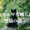 私のカルマを映し出す 黒猫の話①